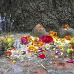 Babaji's tree is honored as a shrine, the two stones signifying Babaji and Lahiri Mahasaya's memory. This sacred space is charged with high spiritual energy.